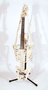 Bone is used a lot for acoustic guitar