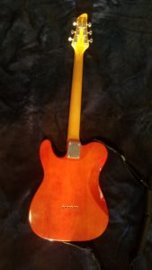 Austin Telecaster back view
