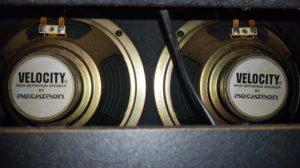 Rocktron R50C speakers