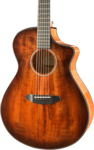 Breedlove acoustic