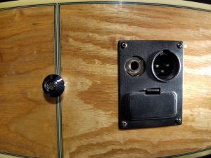 Ibanez acoustic guitar Output Jacks