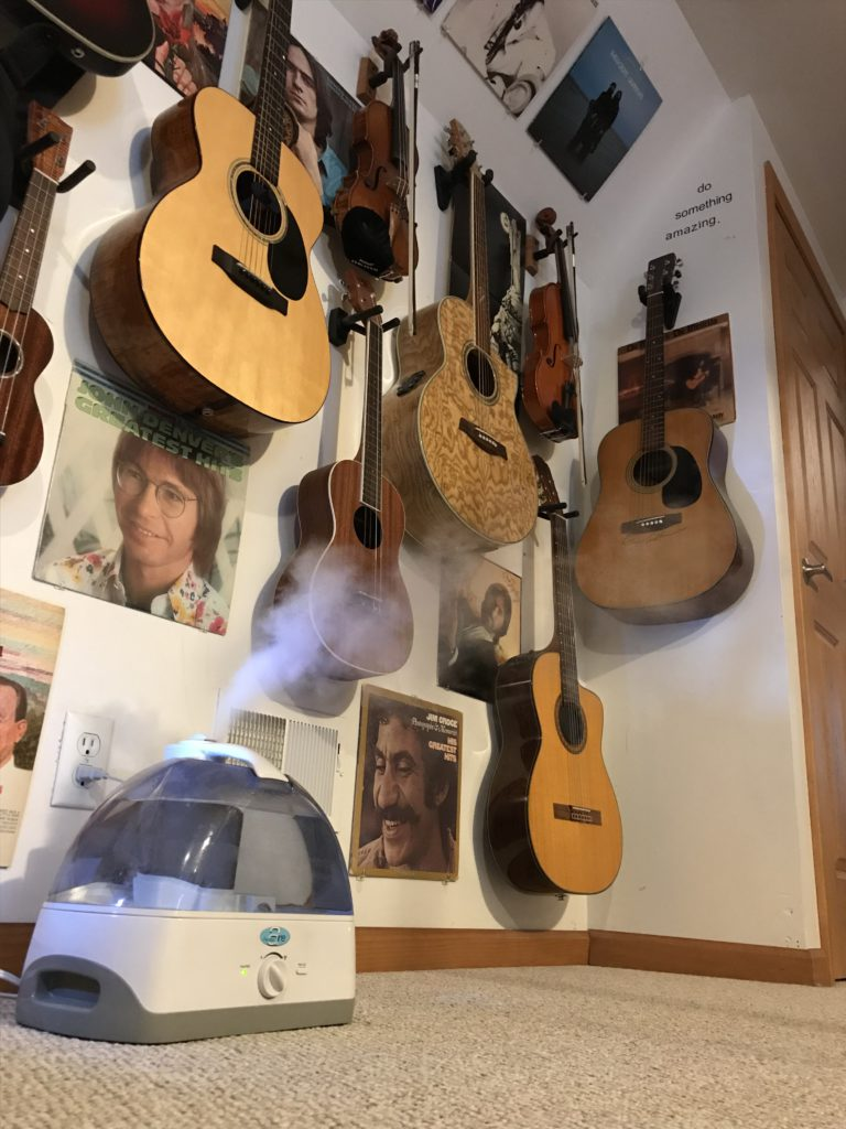guitar humidification