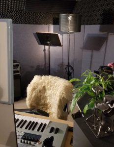 My behind-the-chair sound absorption setup!